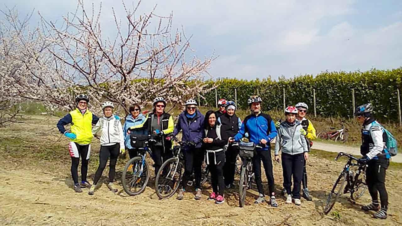 Hanami a Pecetto bici &Dintorni