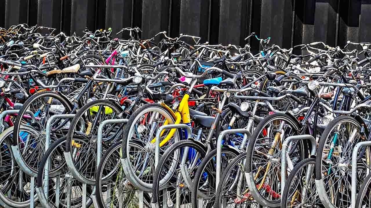 Cinque domande per un Presidente bici &Dintorni