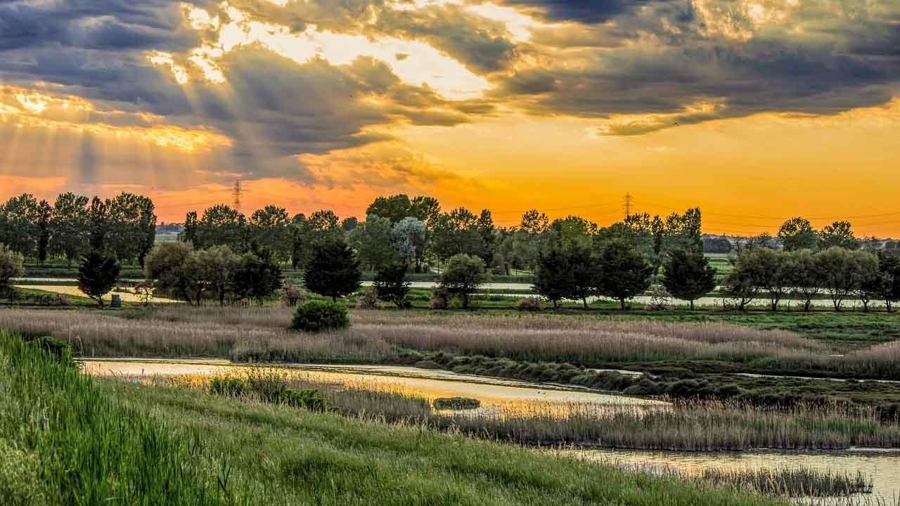 Da Ferrara a Ravenna e il Delta del grande fiume bici &Dintorni