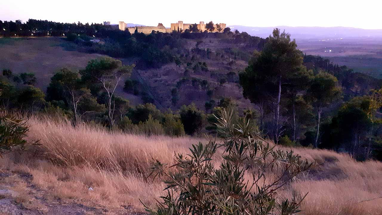 Video Puglia tappa 6 4 settembre 2020 bici &Dintorni