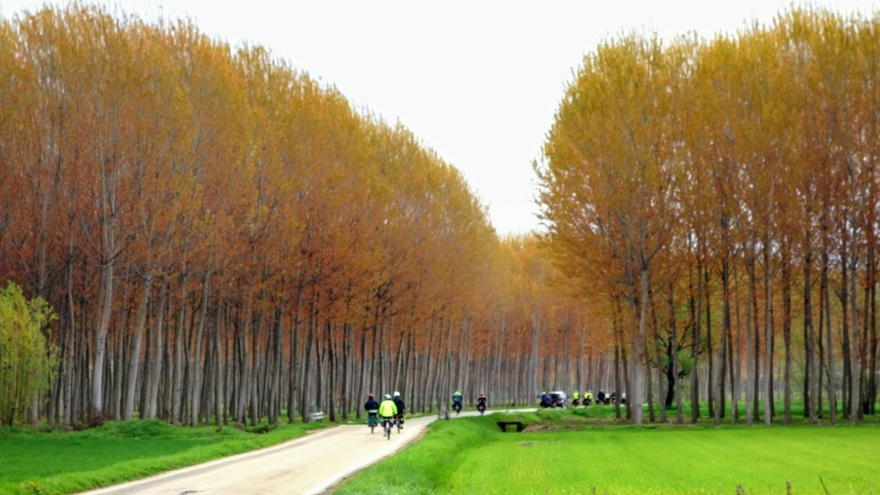 Il primo Bicigrill del Piemonte bici &Dintorni