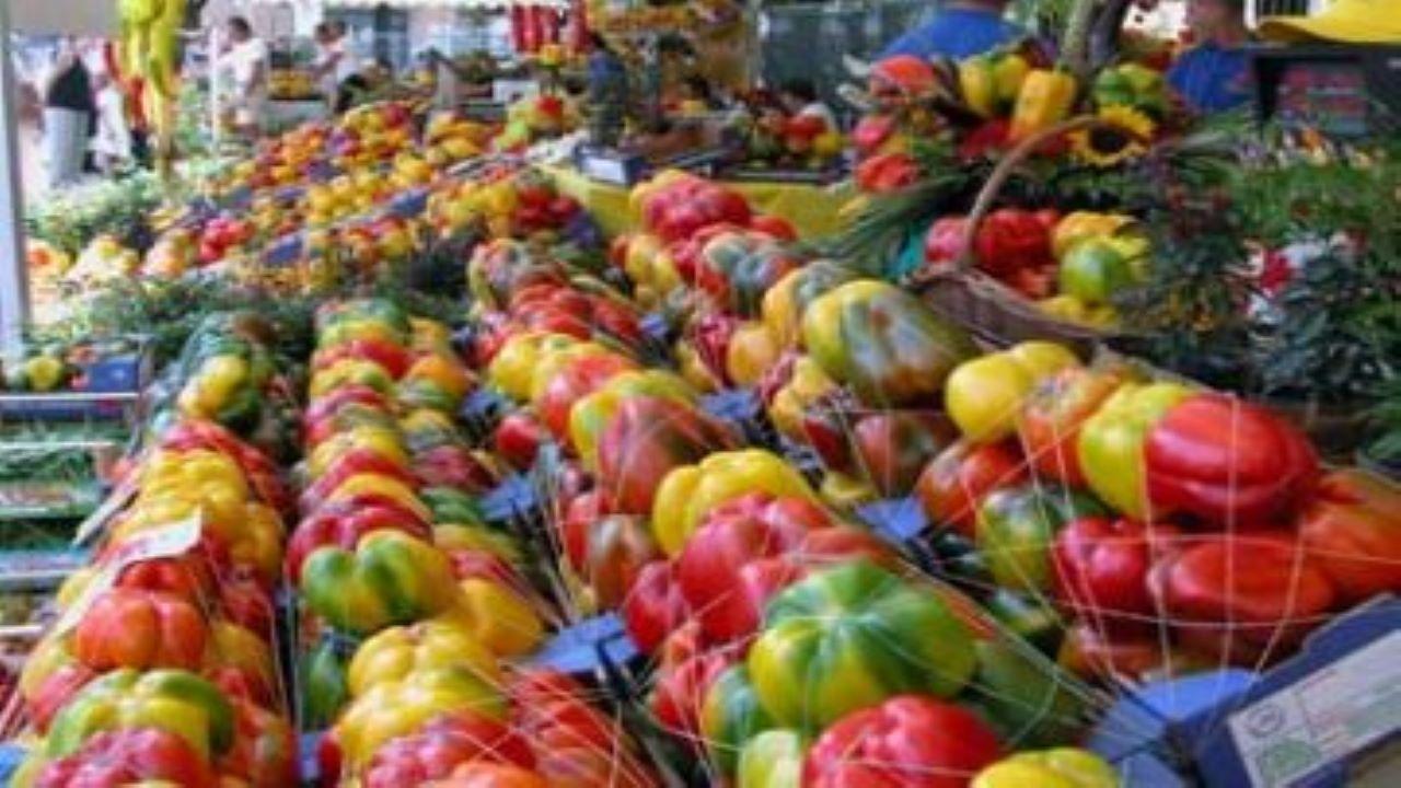Fiera nazionale del peperone di Carmagnola bici &Dintorni