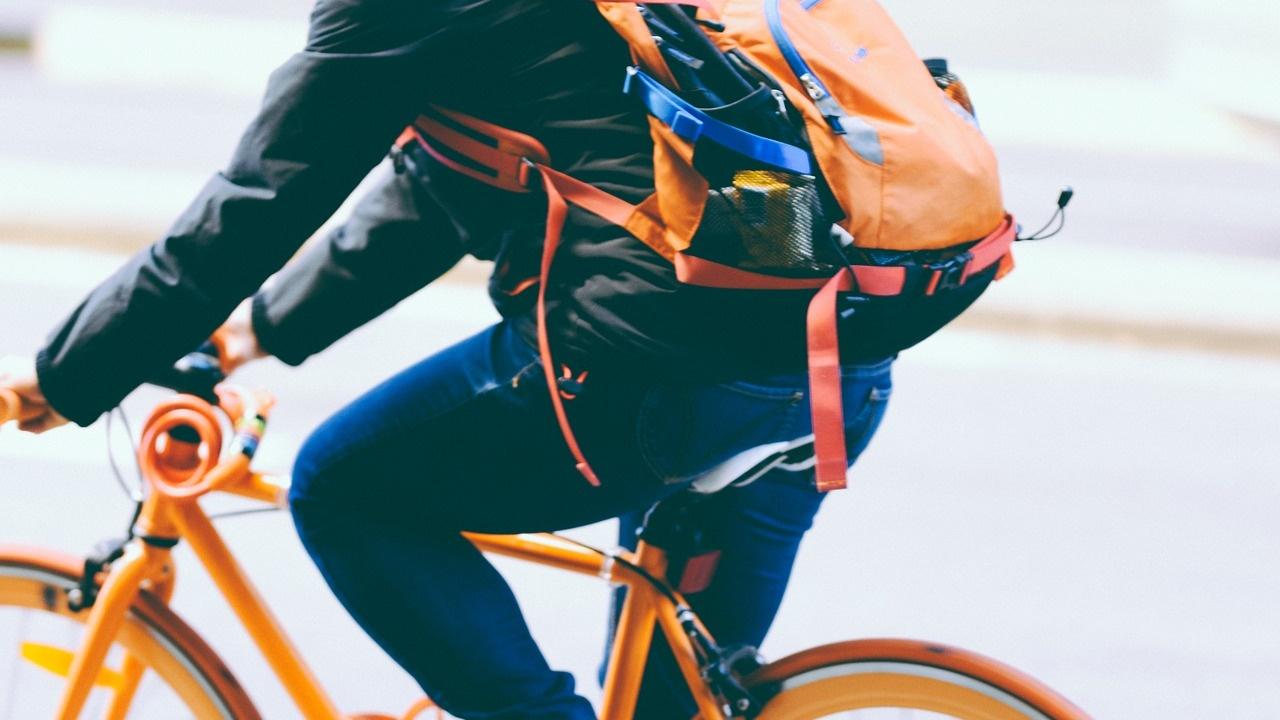 Manuale del ciclista urbano bici &Dintorni